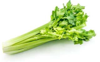 冬季适合吃哪些蔬菜-芹菜